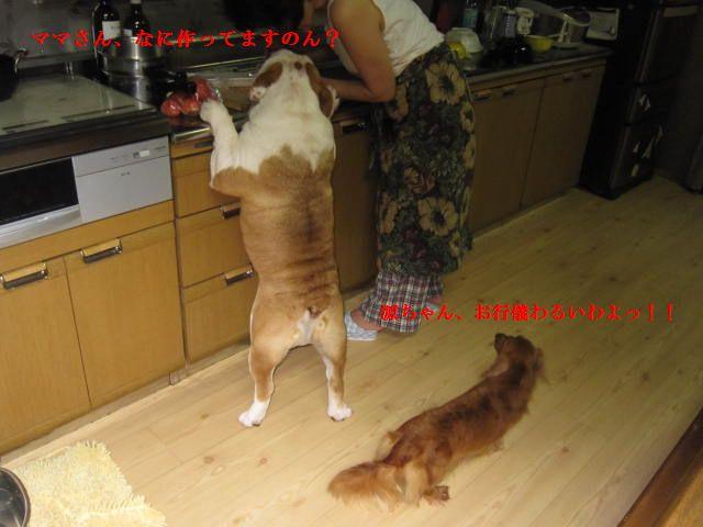 001_20120708114426.jpg