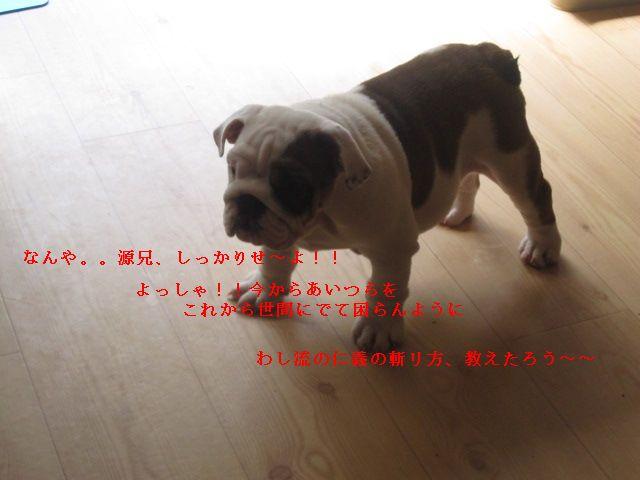 002_20120922155525.jpg