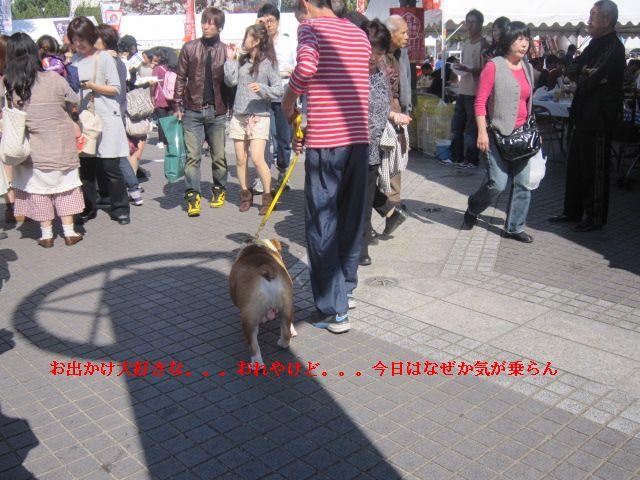 002_20121021153946.jpg