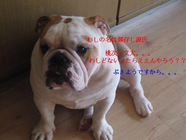 003_20120922160630.jpg