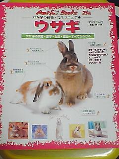 ウサギの本