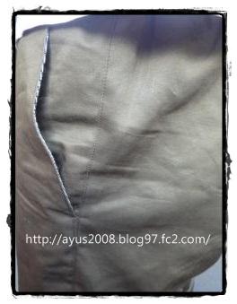 P1050540_convert_20120923204332.jpg