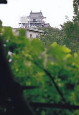 曳馬城跡から望む濱松城天守