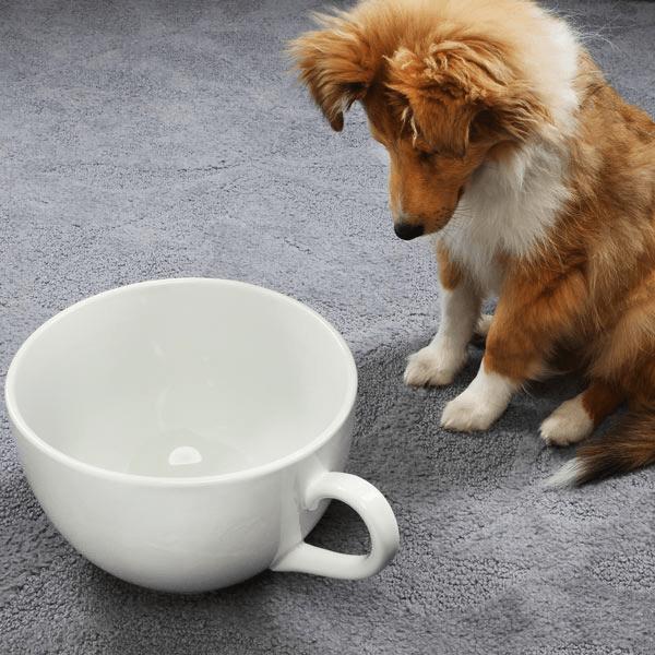 big cup2