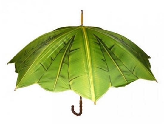 Umbrella-7.jpg