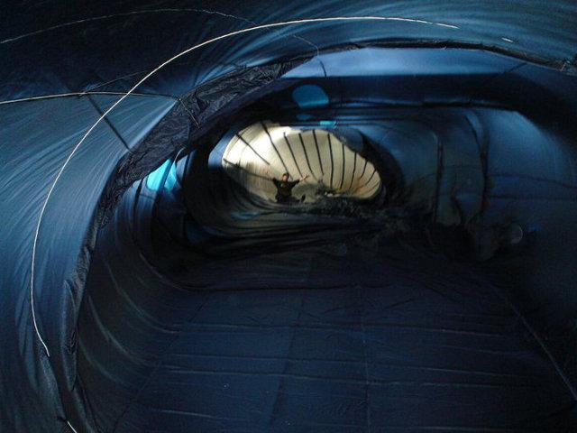 blue-whale-kite-7.jpg