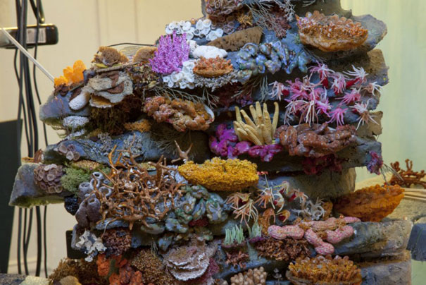 diorama-strange-worlds-coral-reef-matthew-albanese-5.jpg