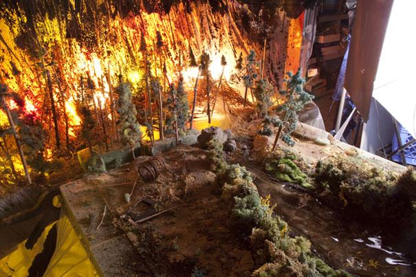 diorama-strange-worlds-wildfire-matthew-albanese-2.jpg