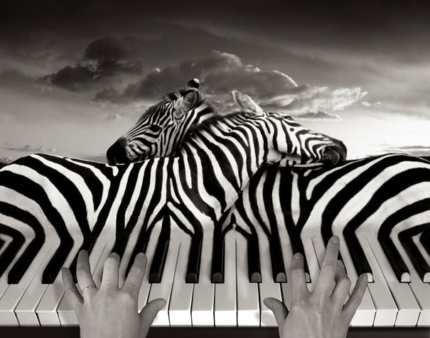 surreal-photo-manipulations-thomas-barbey-2.jpg