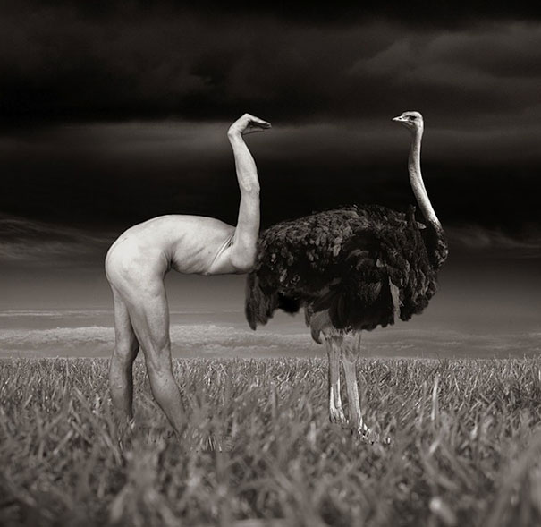 surreal-photo-manipulations-thomas-barbey-3.jpg