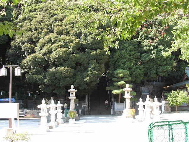 本堂へ至る階段