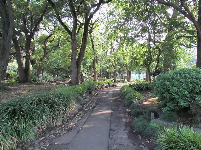 日比谷公園_6