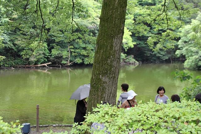 南池の様子_1