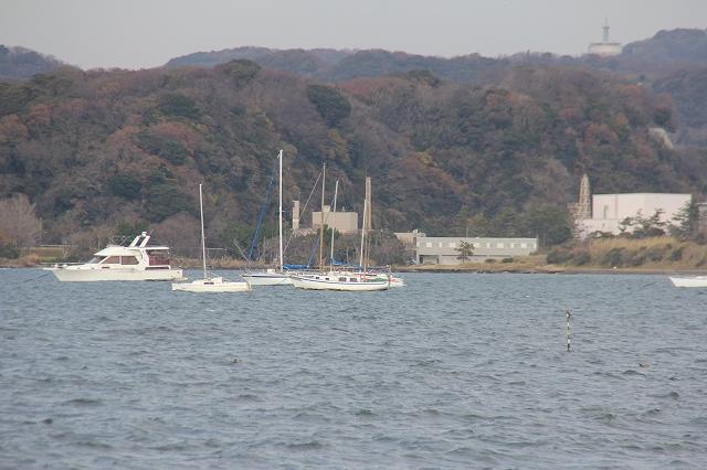 富浦公園から右側方向_6
