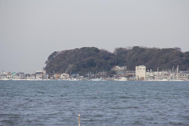 富浦公園から右側方向_7