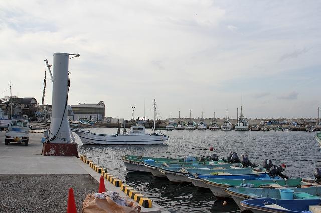 漁港の様子_8