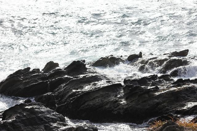 潮騒の丘の下の岩礁_1