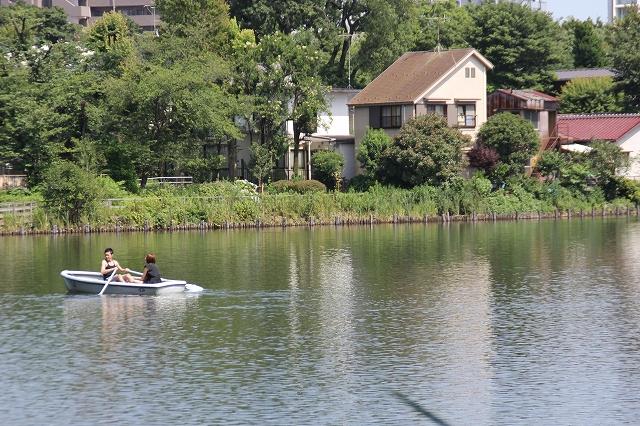 のんびりボート漕ぎ