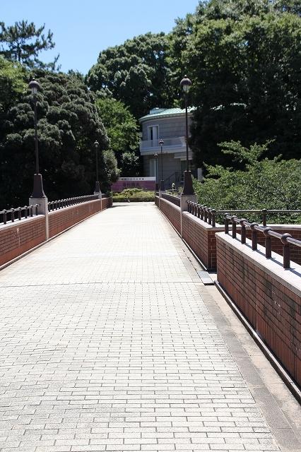 神奈川県近代文学館_1
