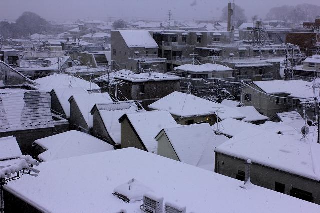 昨日の雪_3
