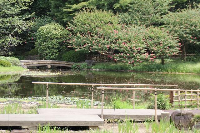 二の丸庭園_3