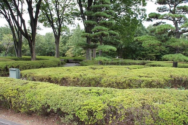 二の丸庭園_5