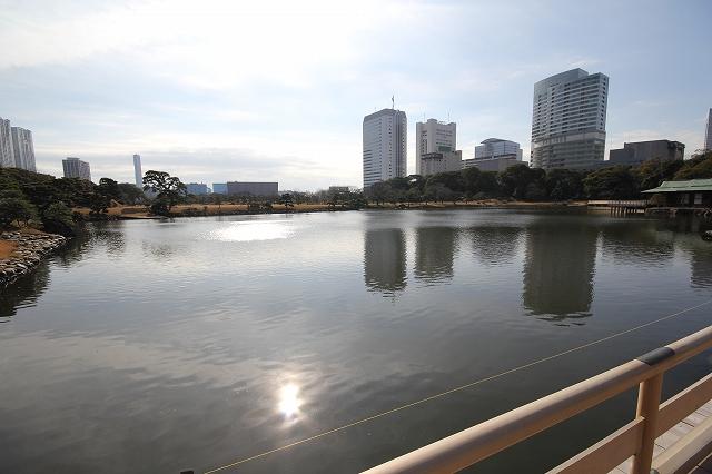 潮入りの池の様子_4
