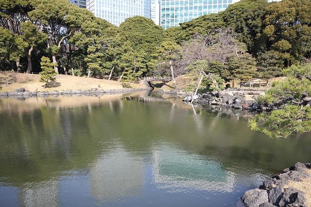 潮入りの池の様子_6