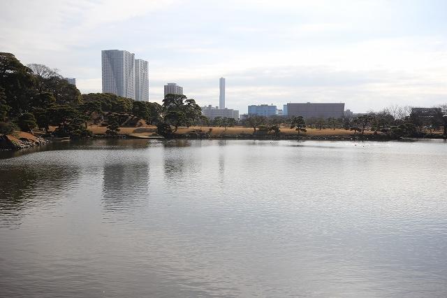 潮入りの池の様子_7