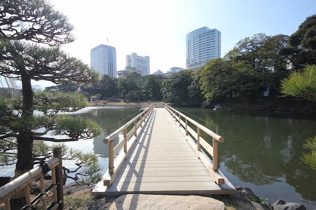 お伝い橋_4