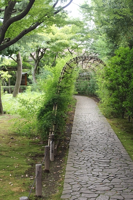 萩のトンネル_1