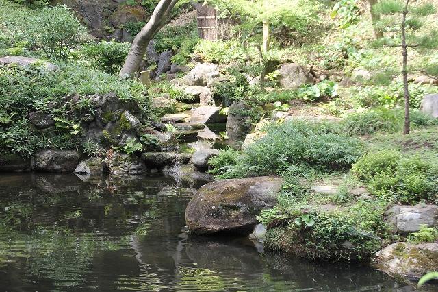 次郎弁天の池_3