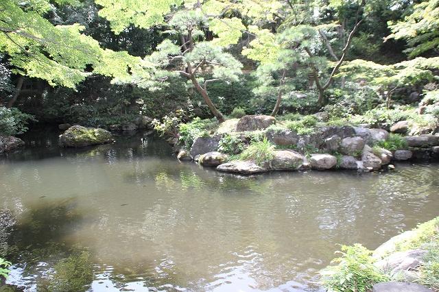 次郎弁天の池_4