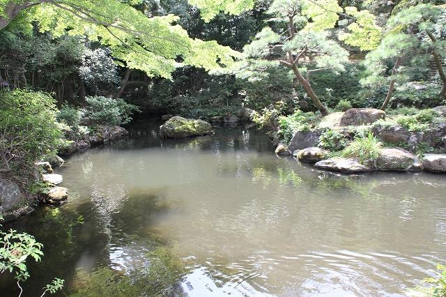 次郎弁天の池_5