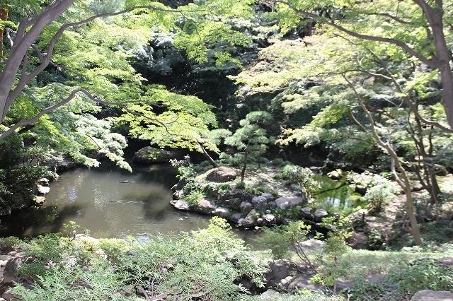 次郎弁天の池_7