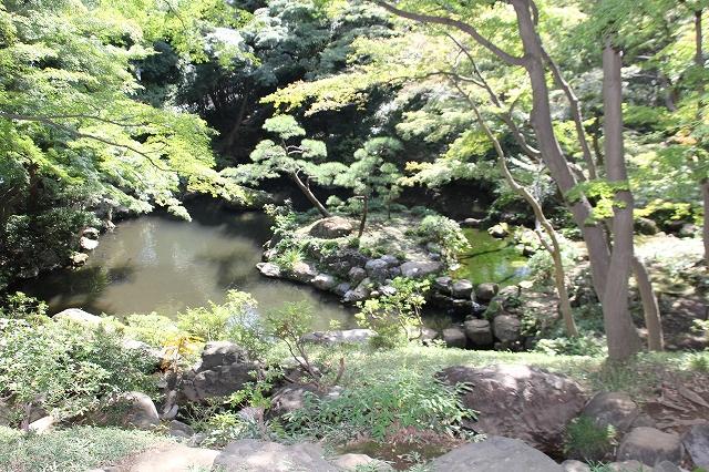 次郎弁天の池_8