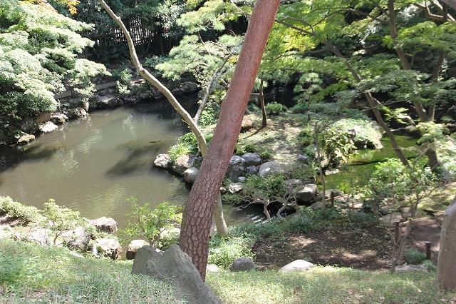 次郎弁天の池_9