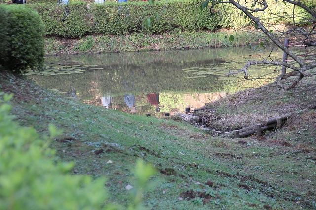田尻の池_1