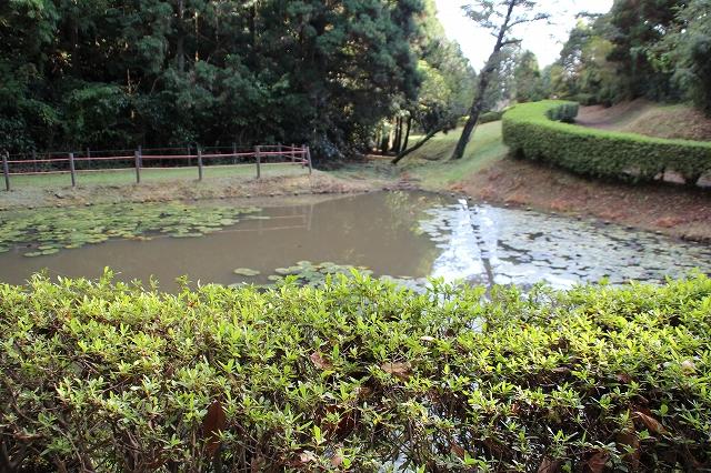 田尻の池_3