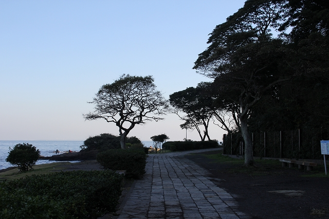灯台に至る道_3