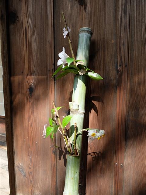 小洒落た花飾り_1