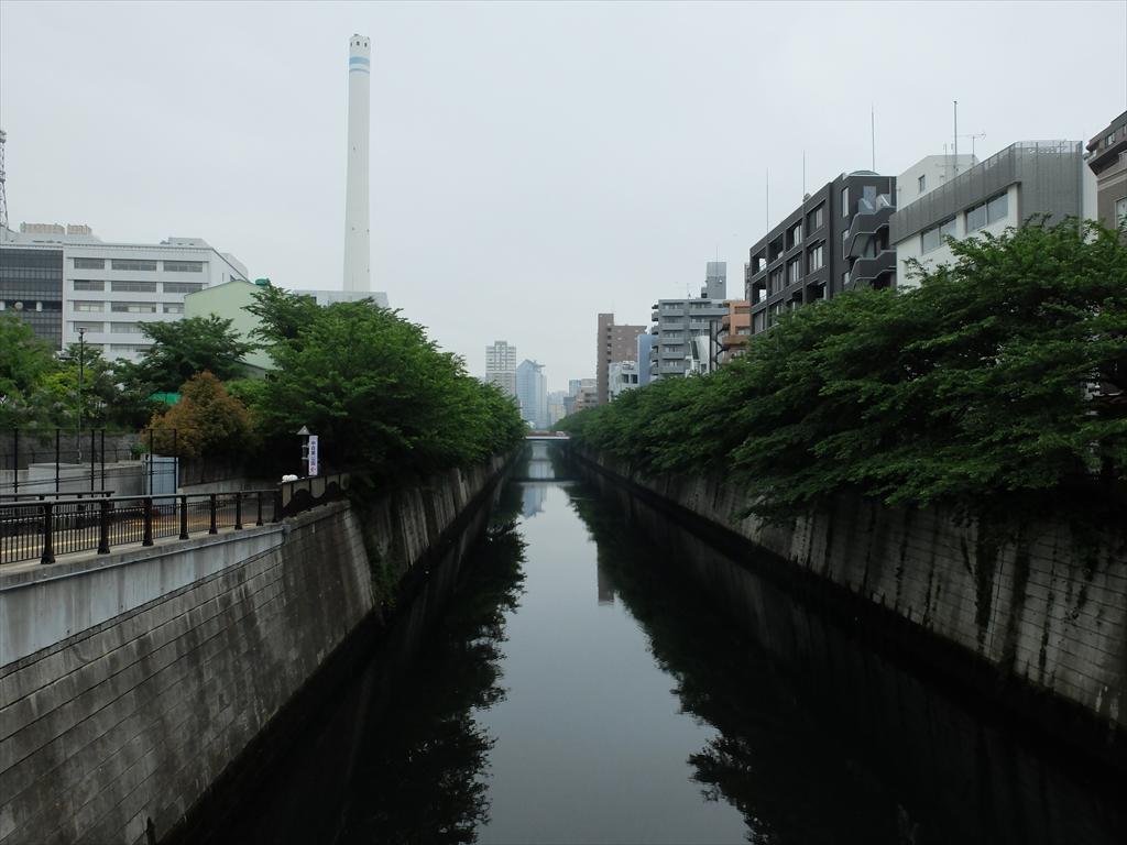 目黒川_3