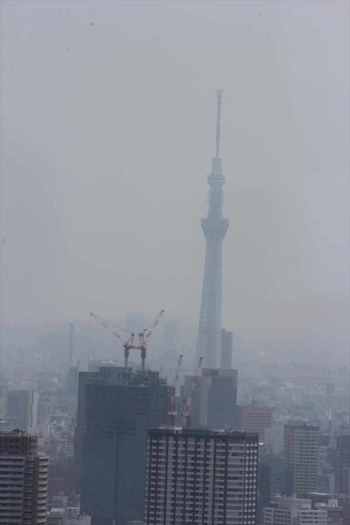 都庁展望台_3