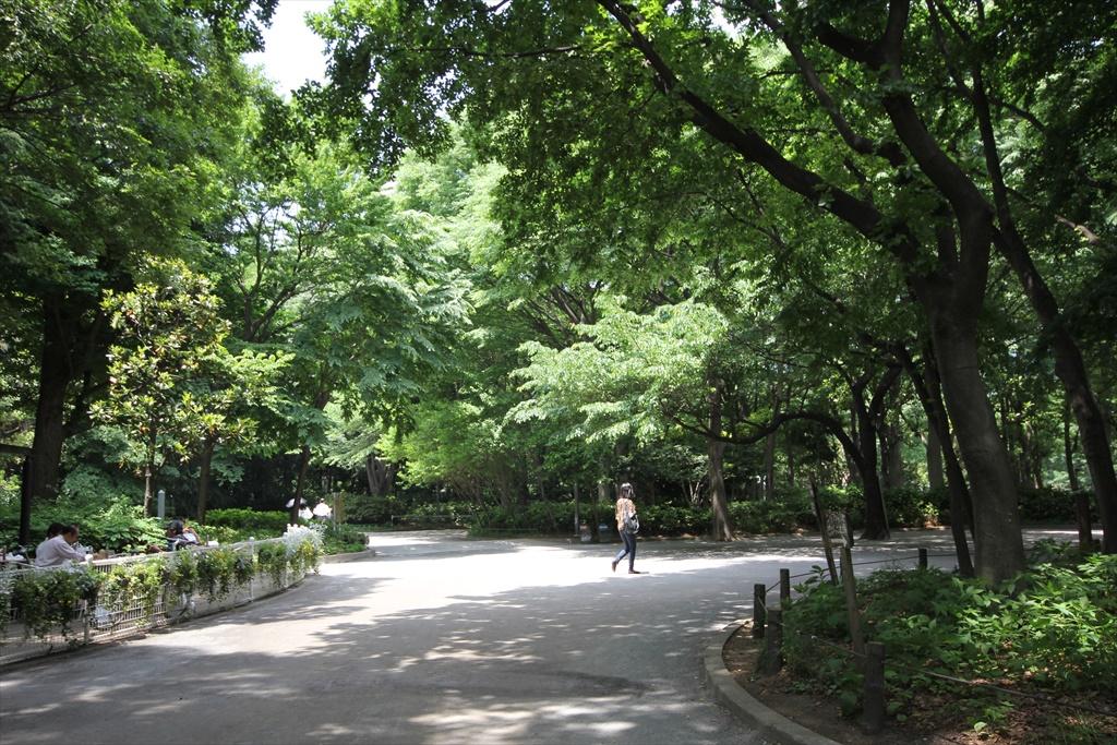 公園園内_2