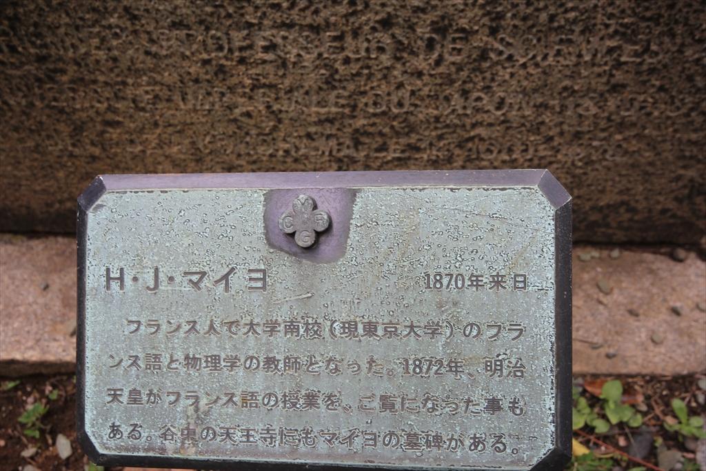 マイヨ教授の墓_2