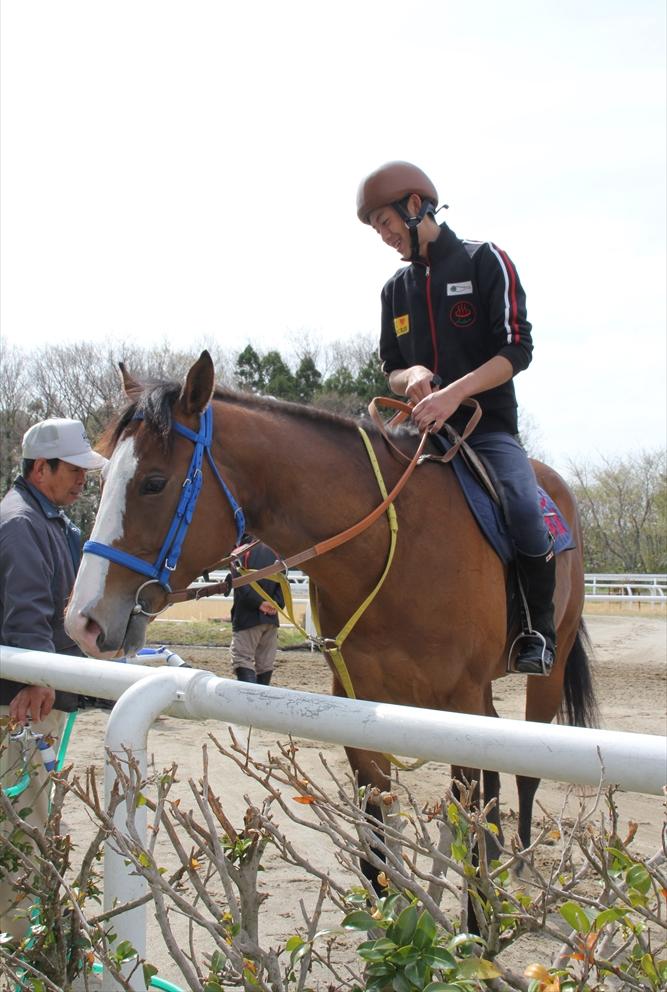 馬場でのトレーニング光景_4