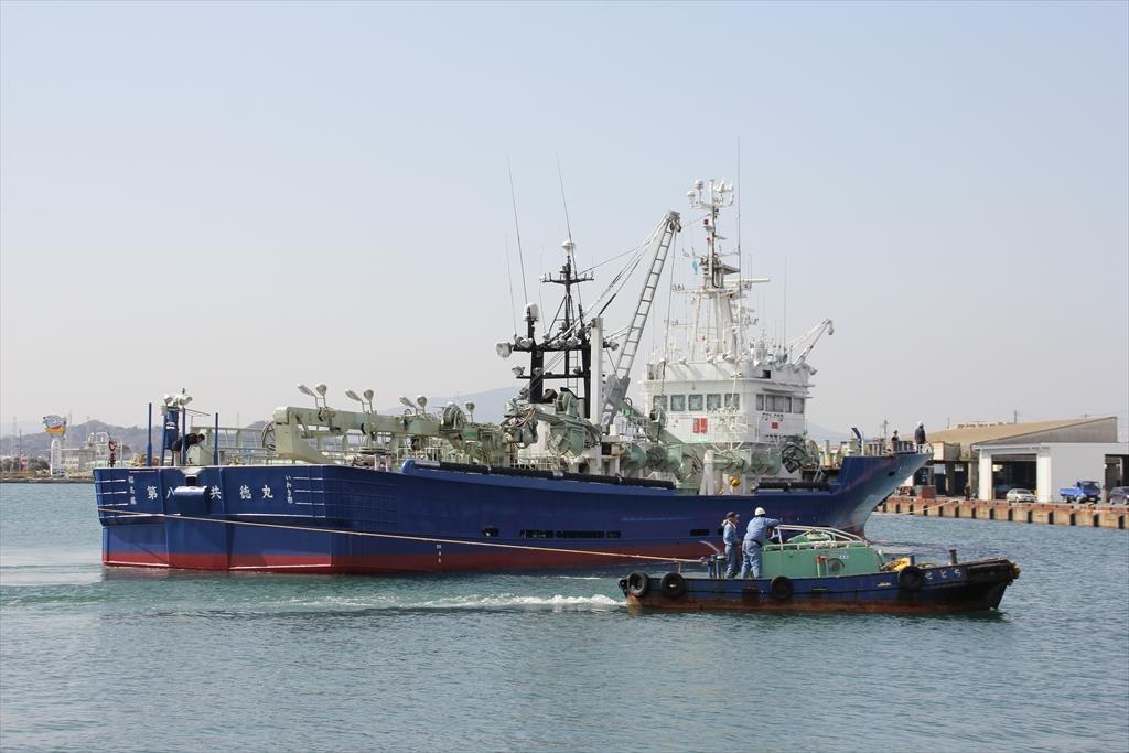 まき網船の接舷_2