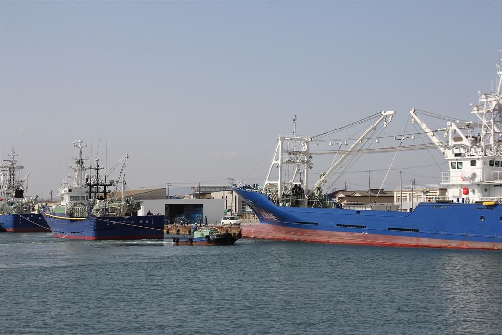 まき網船の接舷_4