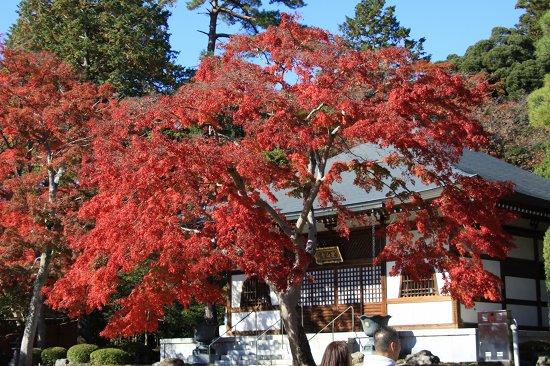 nonin-ji_049_20121119171652.jpg