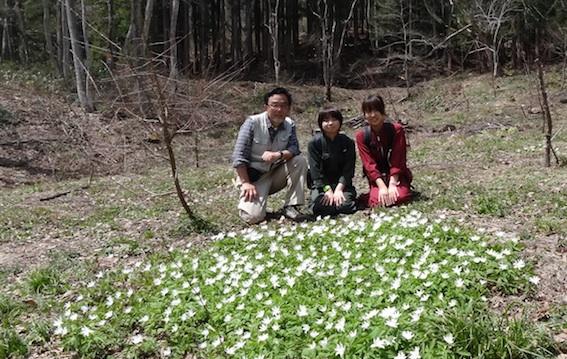 12.4.29キクザキイチリンソウ記念撮影-20